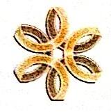普宁市金莎投资有限公司 最新采购和商业信息