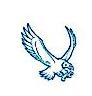 宁波市镇海飞翔纸品厂 最新采购和商业信息
