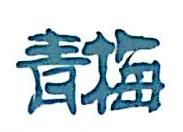 上海青梅信息科技有限公司