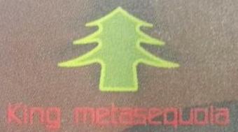 深圳市水杉王光学科技有限公司 最新采购和商业信息