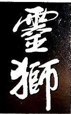 深圳市灵狮文化产业集团有限公司