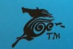 徐州天马国际旅行社有限公司 最新采购和商业信息