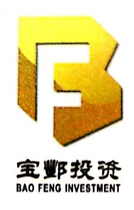 江西省宝酆投资有限公司