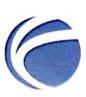 山大地纬软件股份有限公司