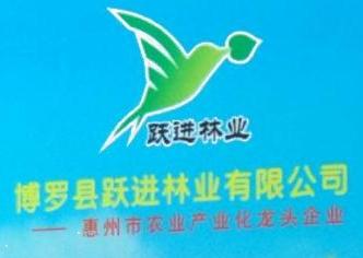 博罗县跃进林业有限公司