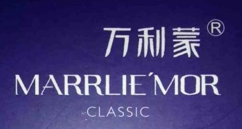 深圳市万利蒙服装有限公司 最新采购和商业信息