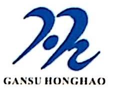 甘肃宏昊电子科技有限公司 最新采购和商业信息