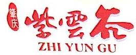 肇庆市紫云谷文化旅游有限公司 最新采购和商业信息