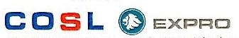 中海艾普油气测试(天津)有限公司