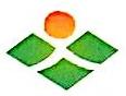 柘城六和食品有限公司 最新采购和商业信息