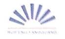郑州瑞丰阳光科贸有限公司 最新采购和商业信息