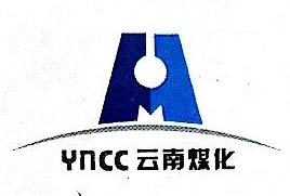云南大为制氨有限公司 最新采购和商业信息