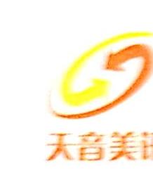 深圳市天音美讯信息技术有限公司