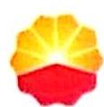 新疆新生代石油技术有限公司