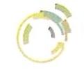 衡阳市松鼠农业开发有限公司 最新采购和商业信息