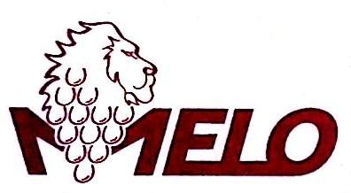 深圳梅洛国际贸易有限公司 最新采购和商业信息