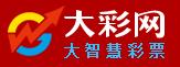 杭州大彩网络科技有限公司