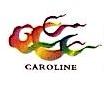 卡罗琳网络科技(北京)有限公司 最新采购和商业信息