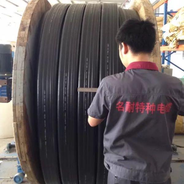 来自罗金冲发布的供应信息:供应各种堆取料机、斗轮机、龙门吊、卷筒、... - 上海名耐特种电缆有限公司