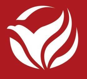 重庆翼飞投资有限公司 最新采购和商业信息