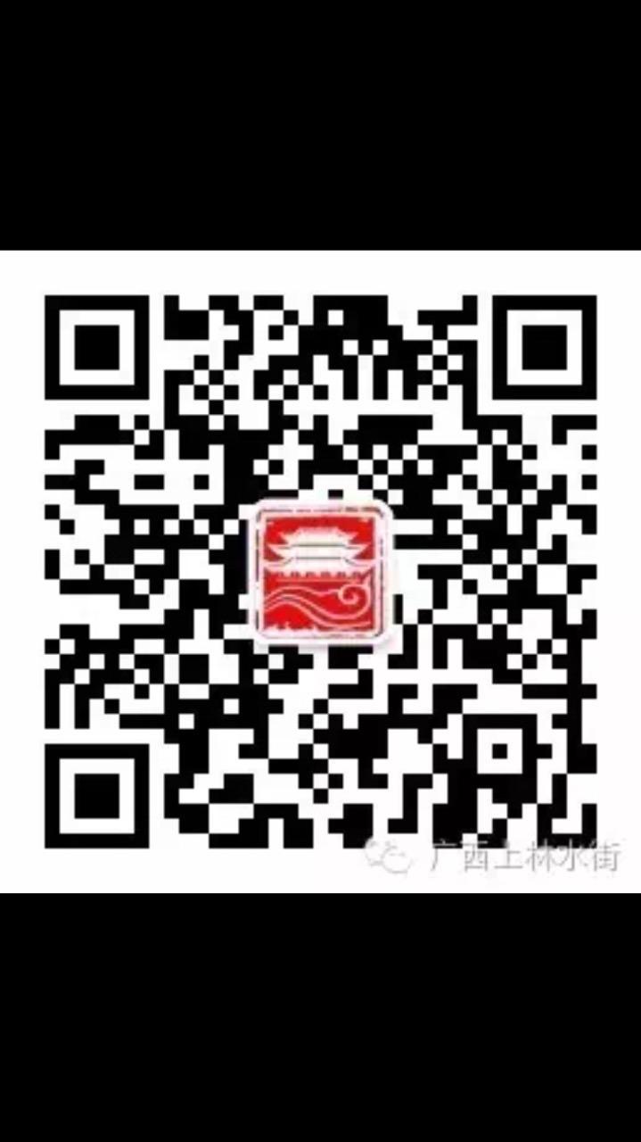 广西上林县水中坊投资有限公司