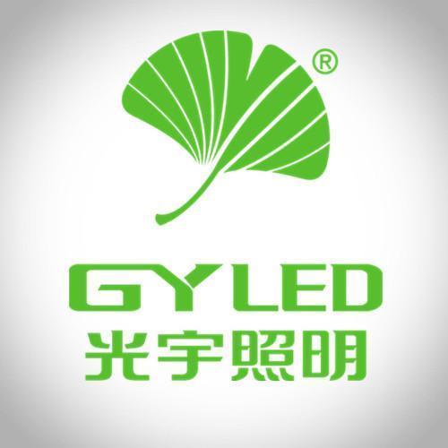 山西光宇半导体照明股份有限公司 最新采购和商业信息