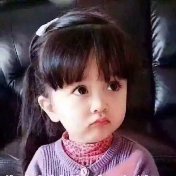 陈丽菁 最新采购和商业信息