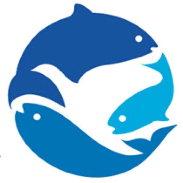 柳洪贇 最新采购和商业信息