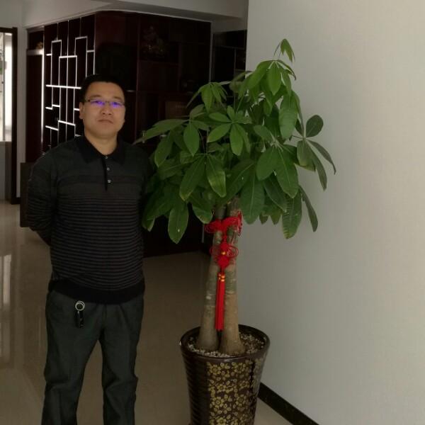 姜佐 最新采购和商业信息