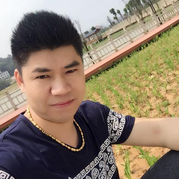 杨庆玲 最新采购和商业信息