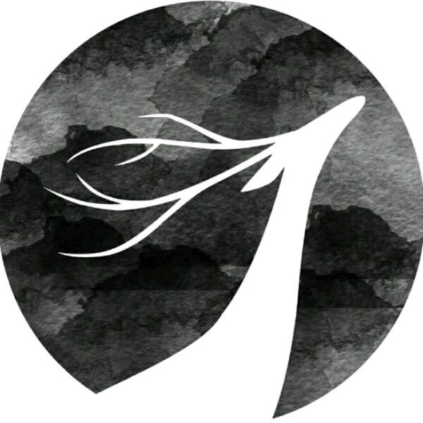 吴海挺 最新采购和商业信息