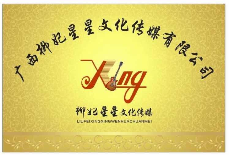 广西柳妃星星文化传媒有限公司 最新采购和商业信息