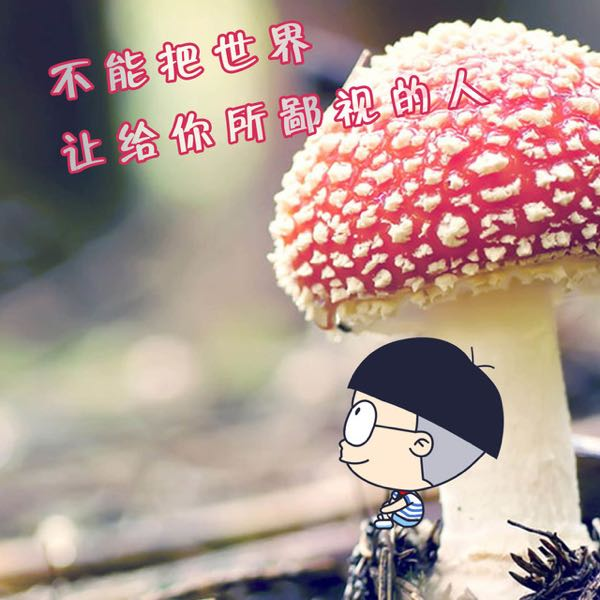 王晓 最新采购和商业信息