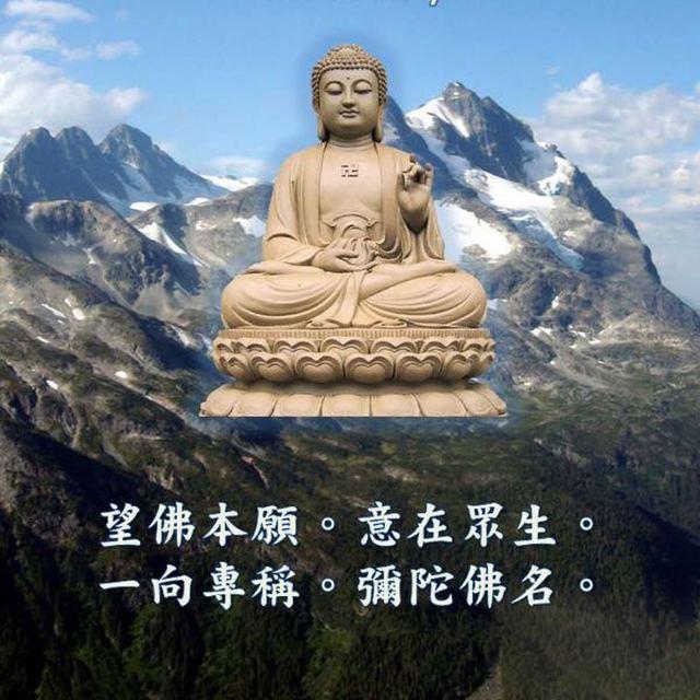 王峰 最新采购和商业信息