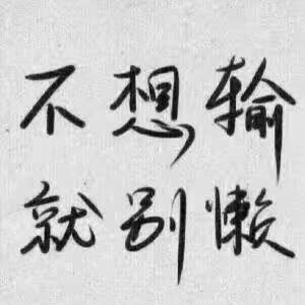 王磊云 最新采购和商业信息