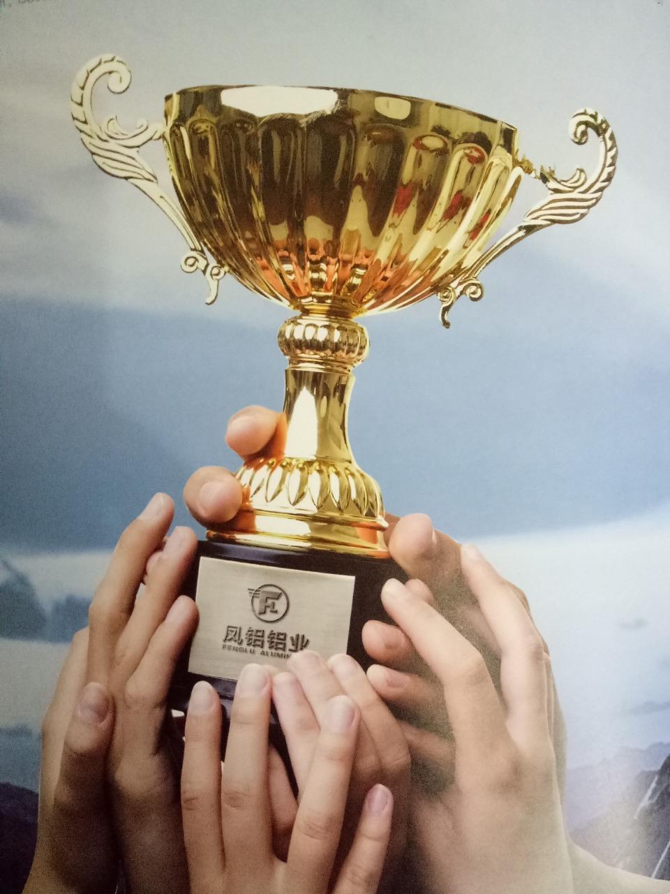 广东凤铝铝业有限公司 最新采购和商业信息