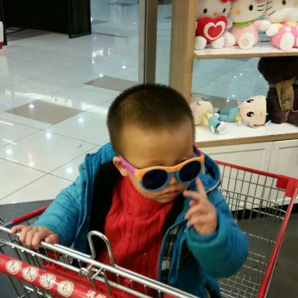 杨华 最新采购和商业信息