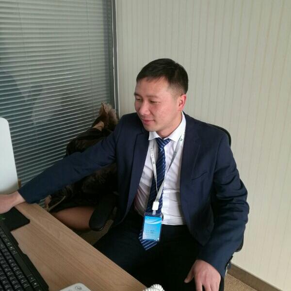 刘英慧 最新采购和商业信息