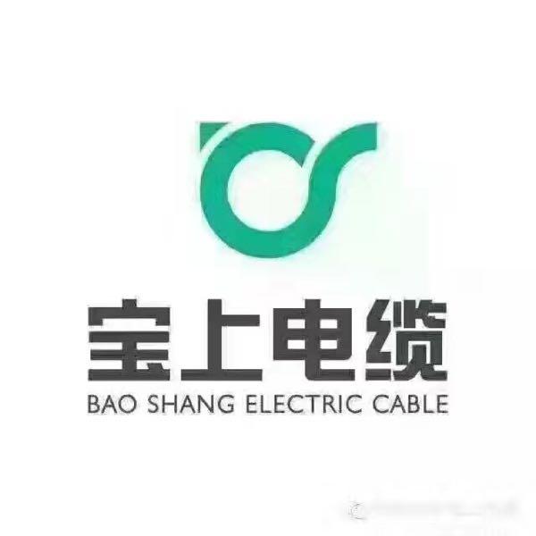 来自黎富腾发布的供应信息:武汉宝上电缆有限公司专业生产高低压交联电... - 武汉宝上电缆有限公司