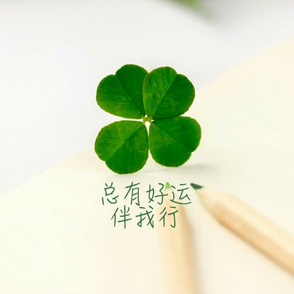 王小利 最新采购和商业信息