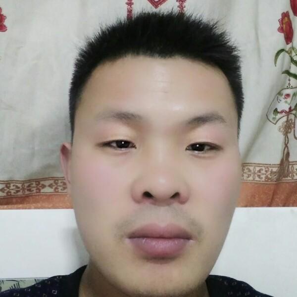 赵朋朋 最新采购和商业信息