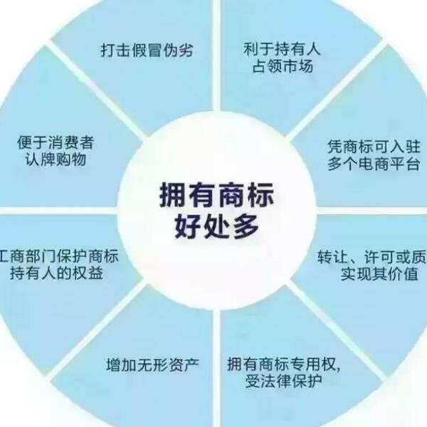 文龙 最新采购和商业信息