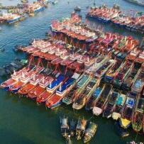 来自方文发布的商务合作信息:... - 香港威尔逊航海仪器有限公司