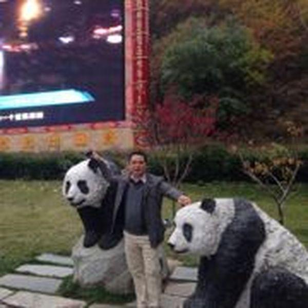 杨立平 最新采购和商业信息